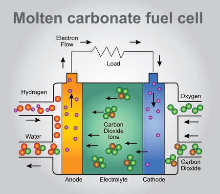 hydride: Molten carbonate fuel cells are currently being developed for natural gas, biogas (produced as a result of anaerobic digestion or biomass gasification), and coal-based power plants for electrical utility, industrial, and military applications. Vector, Ill
