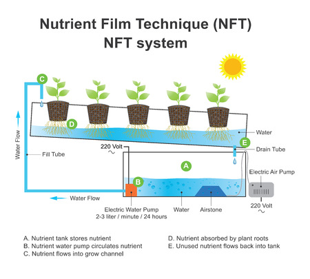 Nutrient film technique (NFT) is a hydroponic technique wherein a very shallow stream of water containing all the dissolved nutrients required for plant growth is re-circulated past the bare roots of plants in a watertight gully, also known as channels. V