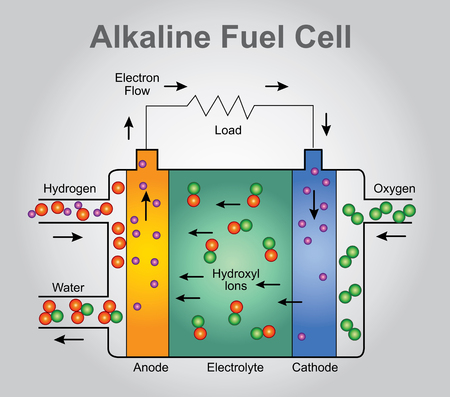 seeps: The alkaline fuel cell, also known as the Bacon fuel cell after its British inventor, Francis Thomas Bacon, is one of the most developed fuel cell technologies. NASA has used alkaline fuel cells since the mid-1960s, in Apollo-series missions and on the Sp