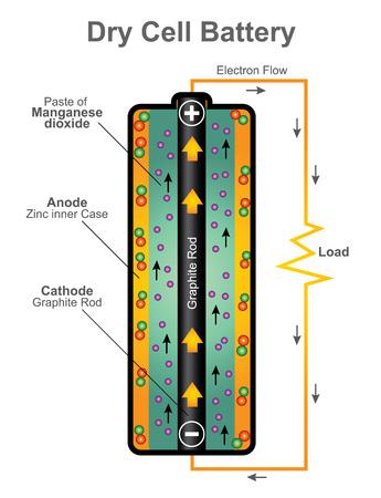 La cellule sèche utilise un électrolyte en pâte, avec suffisamment d'humidité pour permettre l'écoulement du courant.
