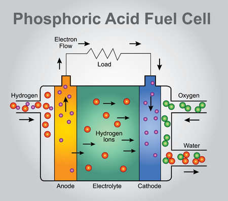Phosphoric Acid fuel cell structure. Education technology info graphic vector.  イラスト・ベクター素材