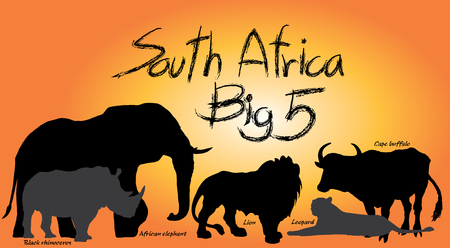 In Africa, the Big Five game animals are the African lion, African elephant, Cape buffalo, African leopard, and rhinoceros. Graphic vector black design.