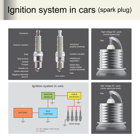 Spark plugs are used to ignition the engine, control by computer unitSpark plugs are important for engines that use gasoline. Illustration info graphic.