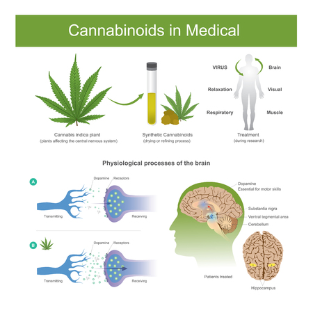 Research has found that cannabis indica plant can have the following effectsCannabis it is plant affecting the central nervous system in human.