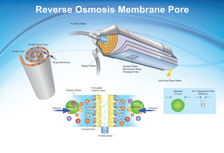 Reverse osmosis (RO) is a water purification technology that uses a semipermeable membrane to remove ions, molecules, and larger particles from drinking water. Info graphic, Illustration.