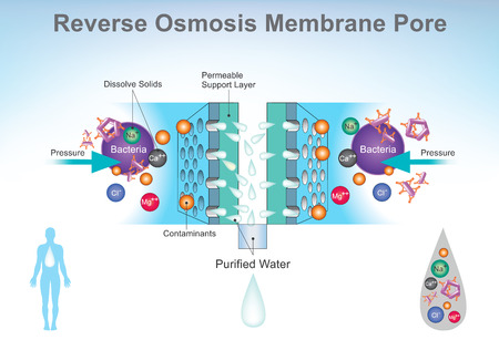Reverse osmosis (RO) is a water purification technology that uses a semipermeable membrane to remove ions.
