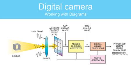 La cámara réflex digital de un solo objetivo es una cámara digital que combina la óptica con un sensor de imagen digital, a diferencia de la película fotográfica.