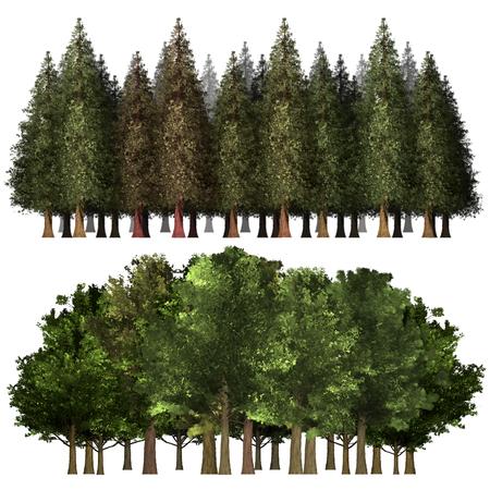 Green Forrest tree background. 2 set Illustration tree. Фото со стока