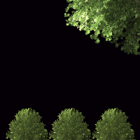Green Forrest tree background. 2 set Illustration tree. Stock Photo
