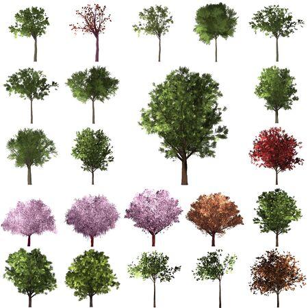 Green Forrest tree background. set Illustration tree.