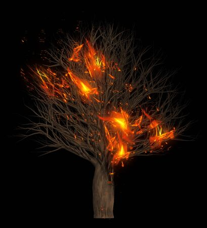 Flames burning dry trees. 3D Illustration. Black colour background isolate.