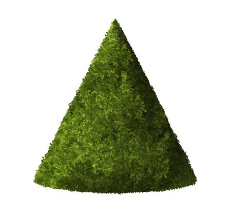 Plant cone green colour. 3D Illustration render. White background isolate. Nature and Gardens design. Stok Fotoğraf - 132285964
