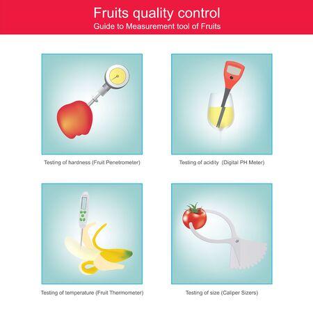 Sample figure illustrate measurement tool of fruits for quality control.  3d illustration.