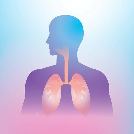 Human lung illustration info graphic. Human body parts. Фото со стока