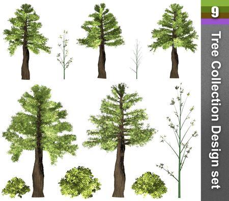 Tree correction design set. 3D Illustration. White background isolate. Nature and Gardens design. Stok Fotoğraf