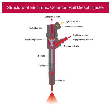Structure of Electronic Common Rail Diesel Injector. Illustration explain a parts inside of electronic common rail diesel injector.