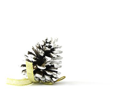 turns of the year: cone on white background. close up. Stock Photo