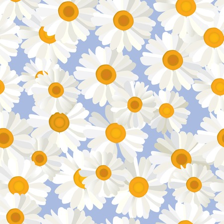 Seamless camomiles flowers pattern on blue background. Vector