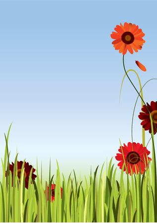 Background with the sky, grace and gerbera