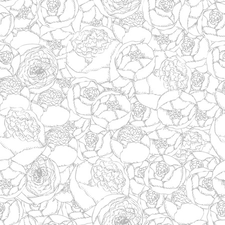 curve: Seamless background pattern. Hand-drawn pion-shaped roses on white background. Illustration