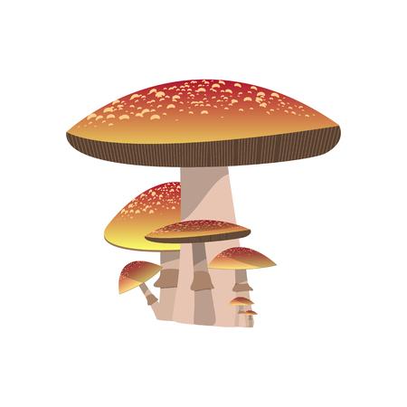 Mushroom vector design.