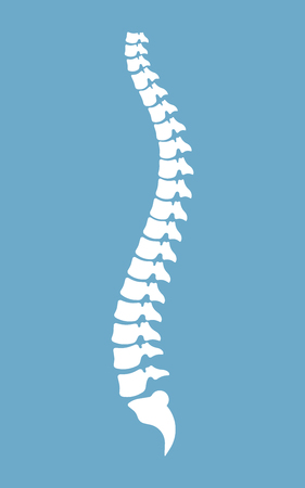 Spine vector design illustration isolated on blue background