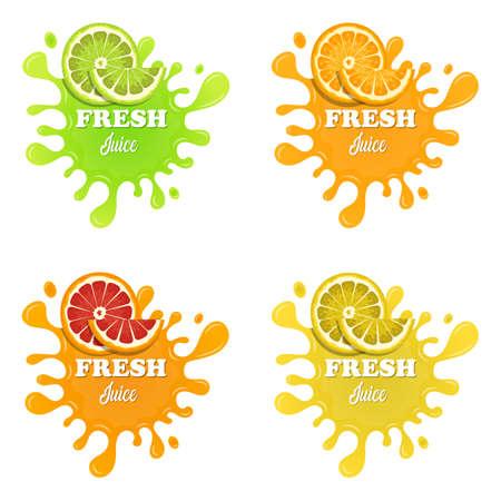 Fruit juice splashes vector design illustration isolated on white background