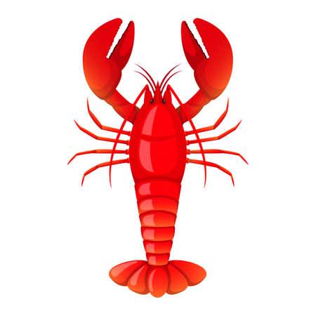 Lobster vector design illustration isolated on white background