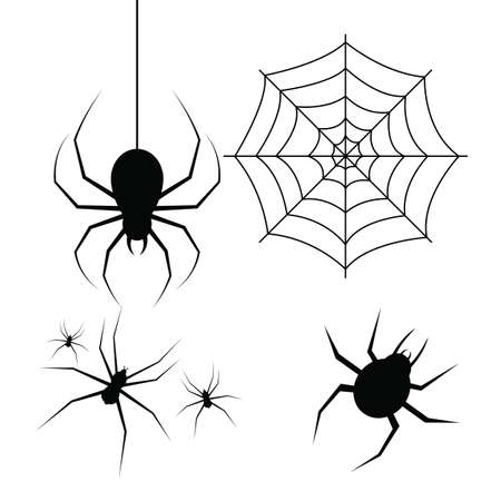 Spider vector design illustration isolated on white background Vectores
