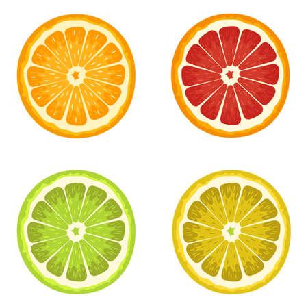 Set of citrus vector design illustration isolated on white background