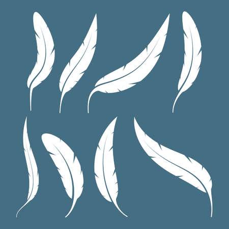 Set of bird feathers vector design illustration