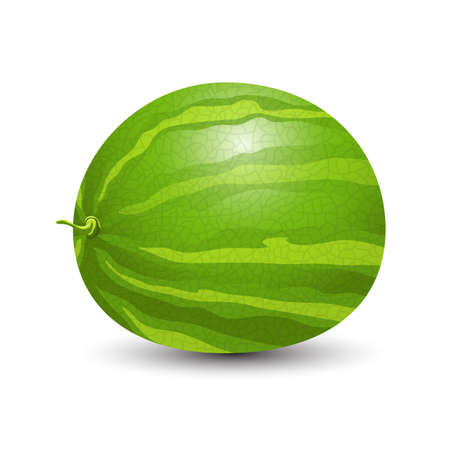 Watermelon vector design illustration isolated on white background