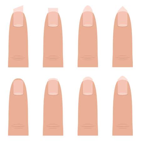 Female nail shapes vector design illustration isolated on white background