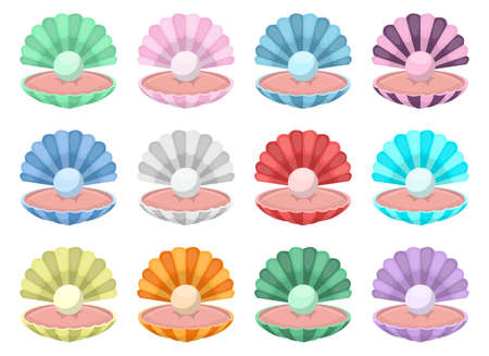Seashell with pearl vector design illustration isolated on white background
