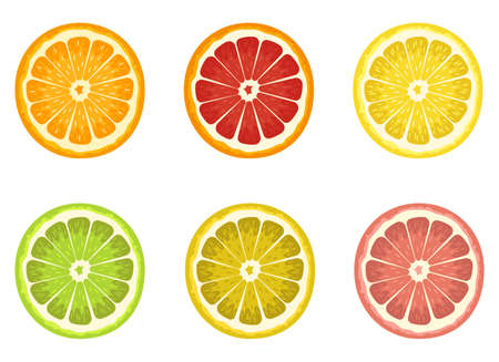 Set of citrus vector design illustration isolated on white background