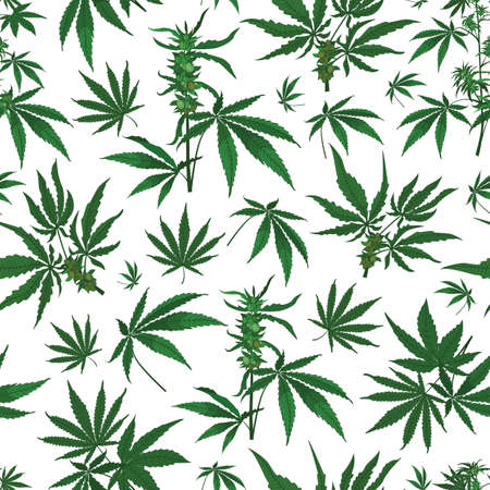Vector marijuana hemp leaves with seeds seamless pattern background. Great use for wellbeing, fabric, wallpaper, packaging projects, medical projects etc.