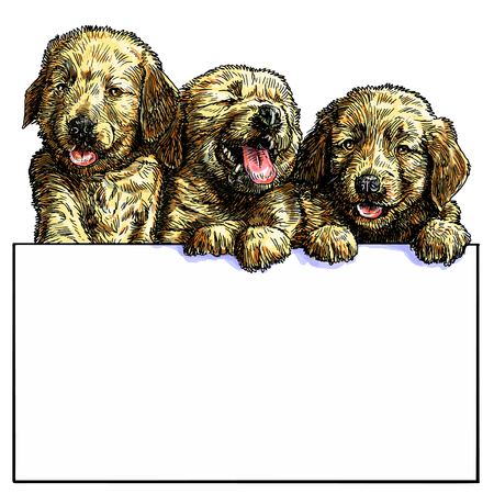 text space: Three puppy and text space draw color illustration vector.