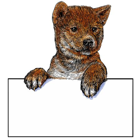 text space: puppy and text space draw color illustration vector.