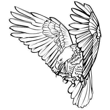 De kale de landing van de adelaarsaanval richt hand trekt zwarte lijn op witte vectorillustratie als achtergrond. Stock Illustratie