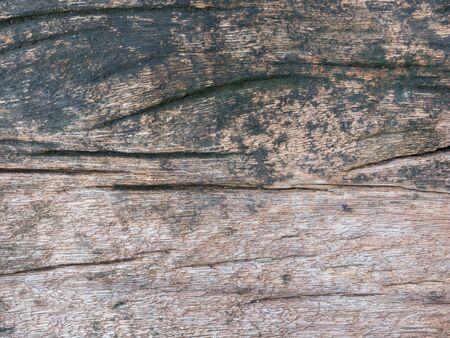 Closeup nature surface texture style of wooden, brick, wall , stone sheet 版權商用圖片
