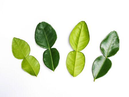Kaffir lime leaves fresh bergamot leaf isolated on white background. Banco de Imagens