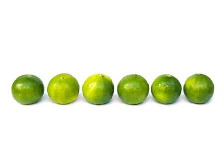 Fresh green lemon lime citrus in row isolated on white background.