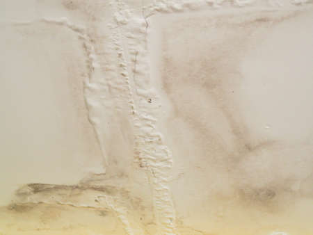 abstract background of ceilings with water leakage in bathroom pipes with stain and moldy.