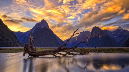 Milford Sound in Twilight