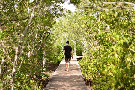 brackish water: The boys were walking in the mangroves alone. Stock Photo