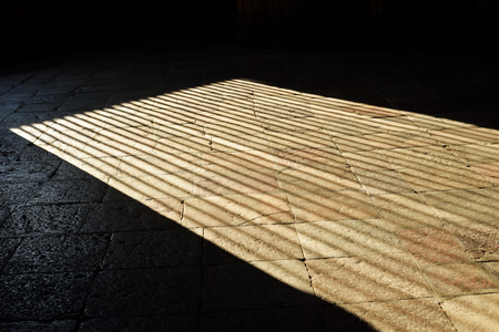 Shadows on the floor of Todaiji Temple, Nara, Japan