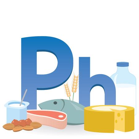Phosphorus Rich Foods Illustration