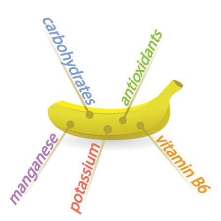 Banana Content Properties and Benefits Illustration