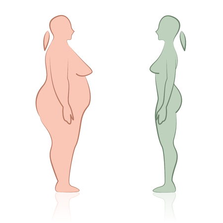 Face to face fat and skinny female silhouettes flat icon design vector illustration