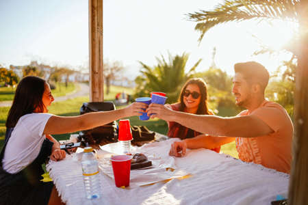 group of friends toasting at a table in nature. Group of friends in a picnic area